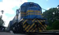20110312002616-tren.jpg