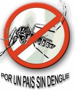 20130420021918-mosquito-dengue.jpg